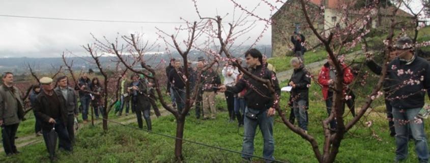 AAPIM Monda Flor 08-03-13